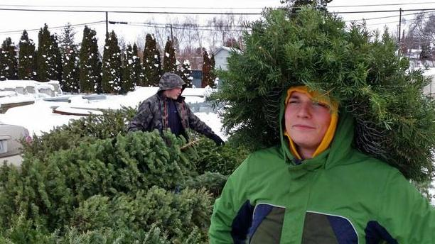 Local Scouts recycling Christmas trees on Jan. 6 image