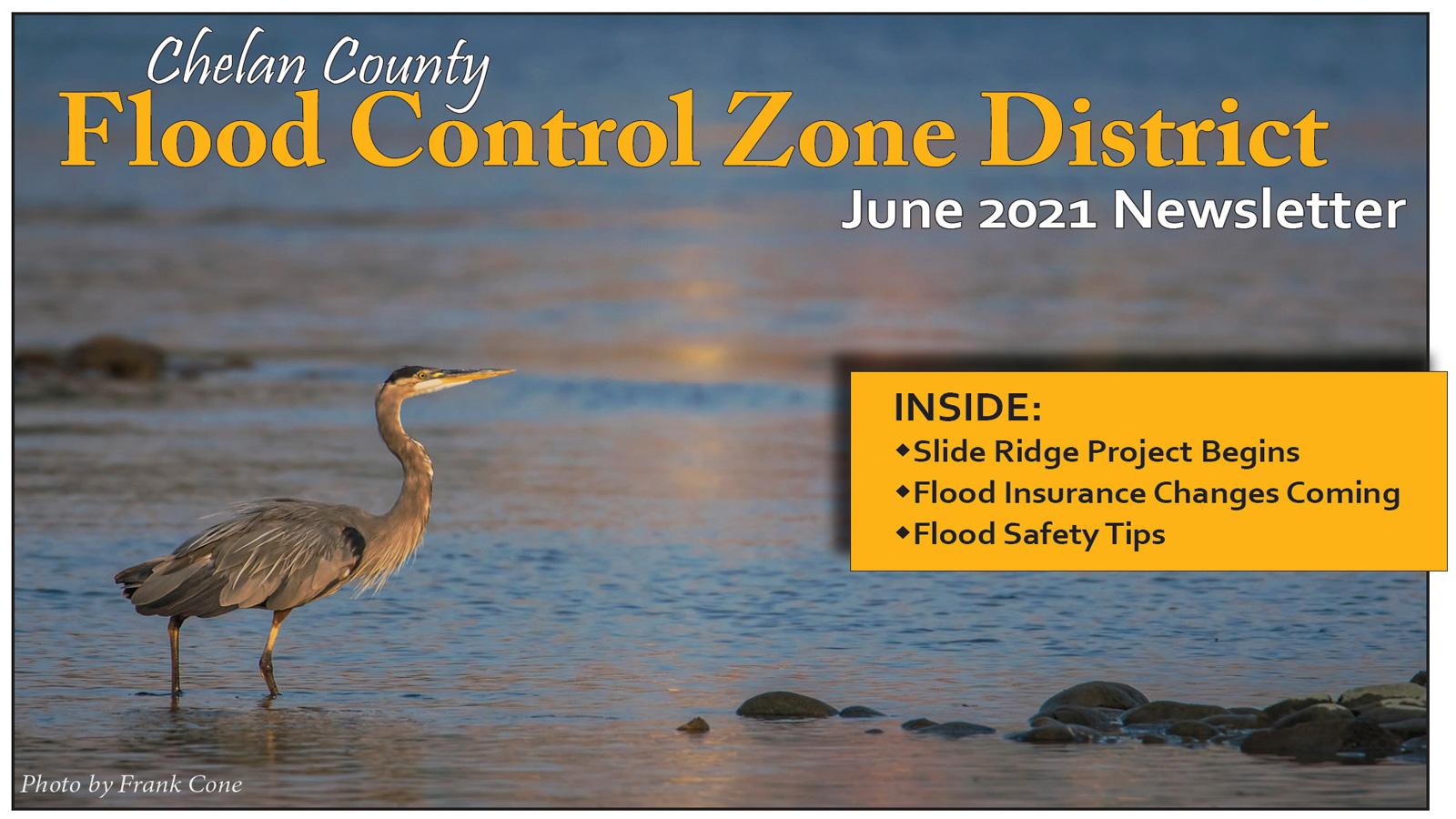 2021 Newsletter: FCZD steps into new era