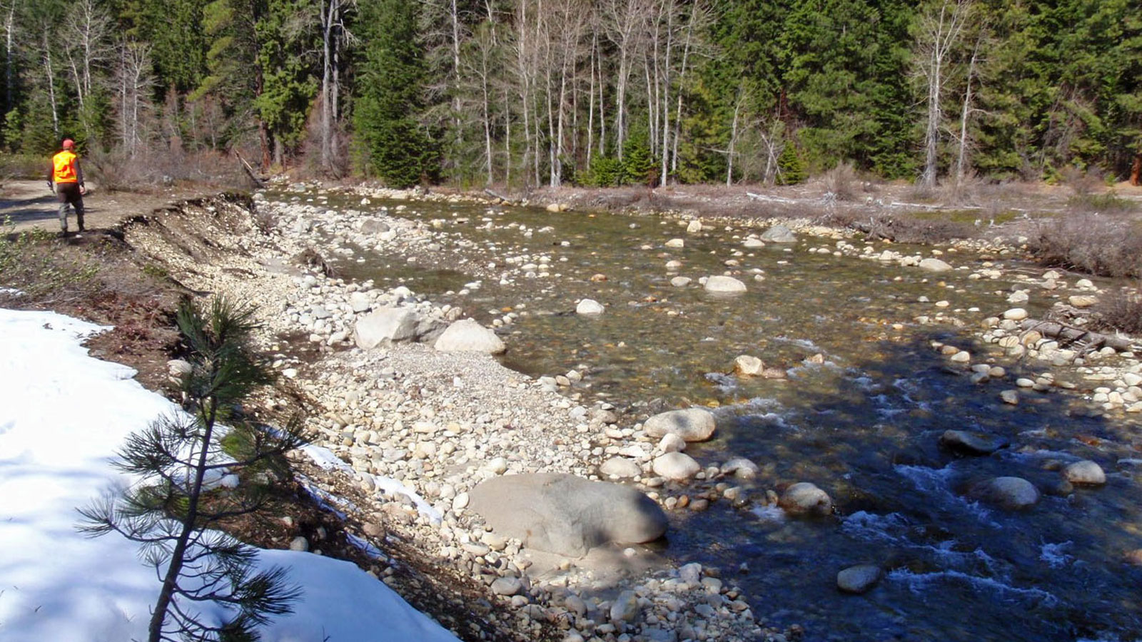 Natural Resources receives $656,000 for salmon recovery efforts