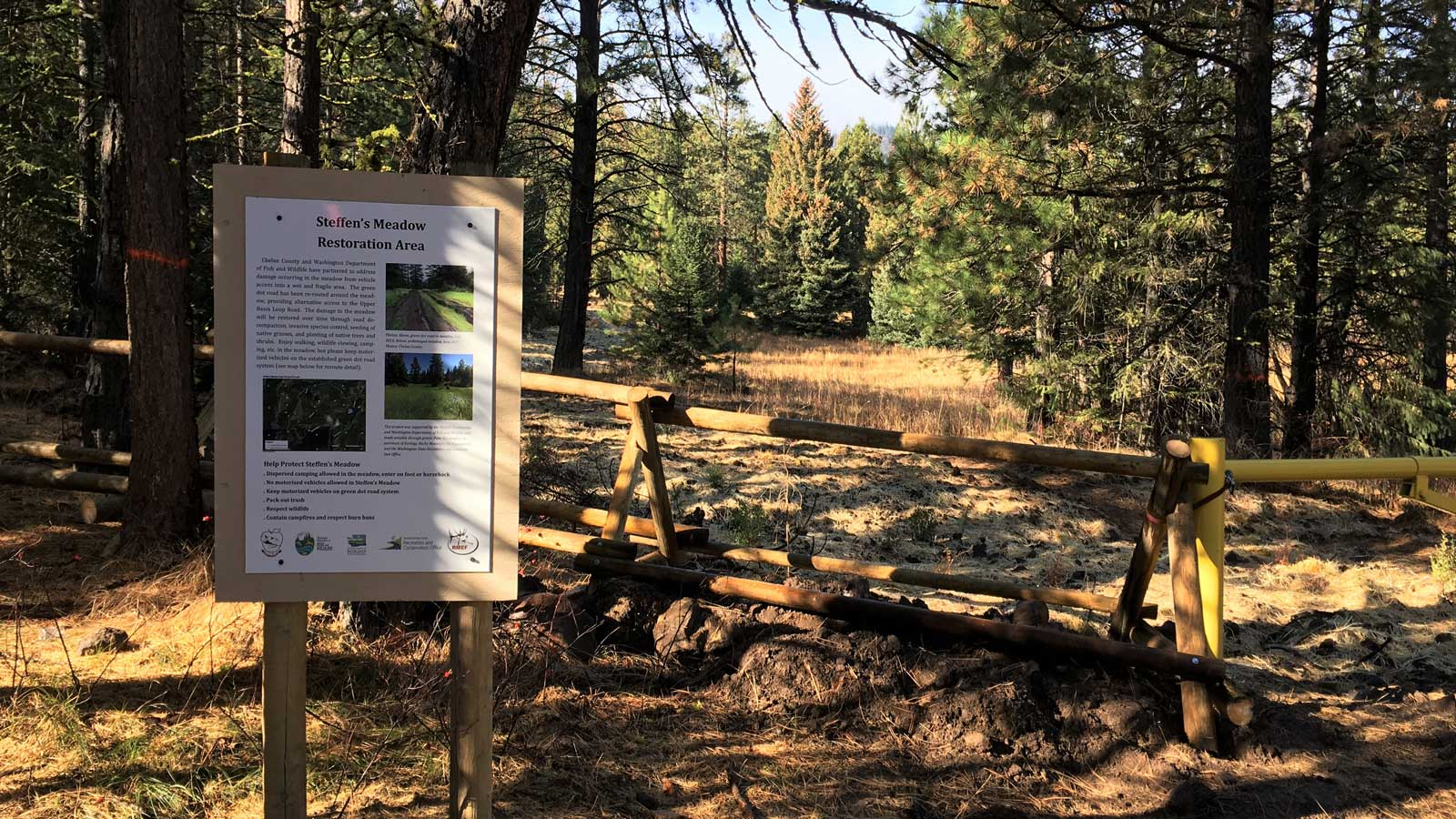 Stemilt-Squilchuck Community Forest highlighted in national report